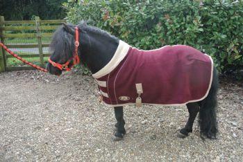 Ruggles Shetland Double Bonded Fleece - Maroon